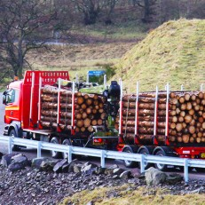 Timber Haulage