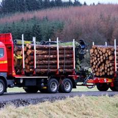 Timber Haulage